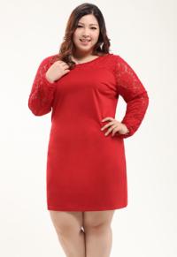 c3fe93ca5c7 Plus Size Floral Lace Tulle Dress - Plusylicious
