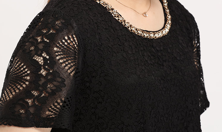 Embellished Neckline and Lace Detail Plus Size Dress