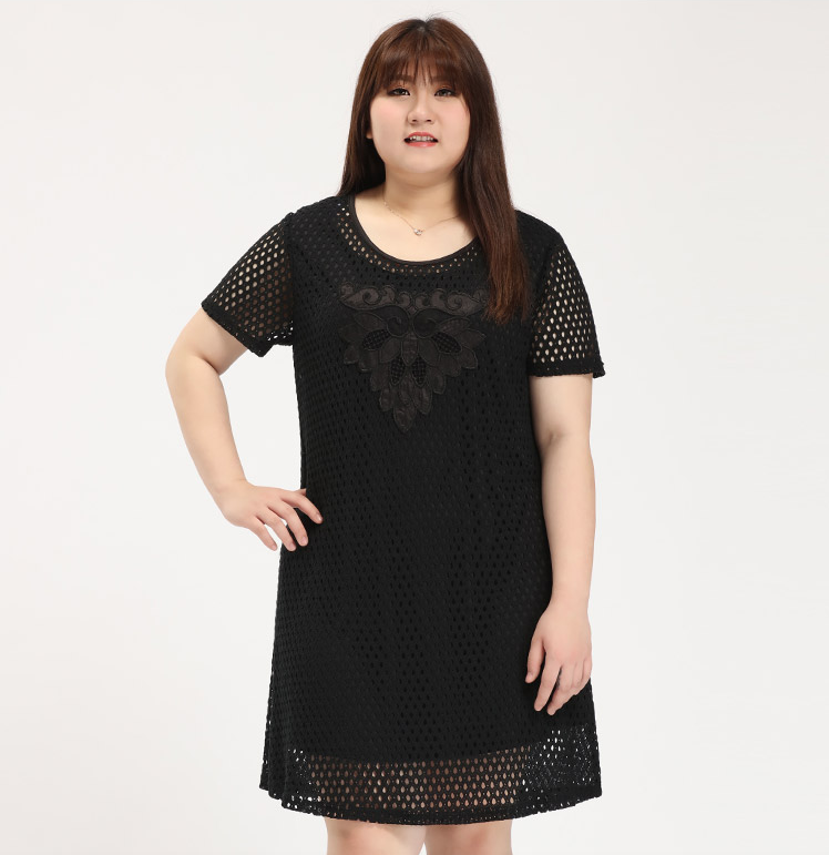 Netted and Lace Patch Detail Plus Size Dress