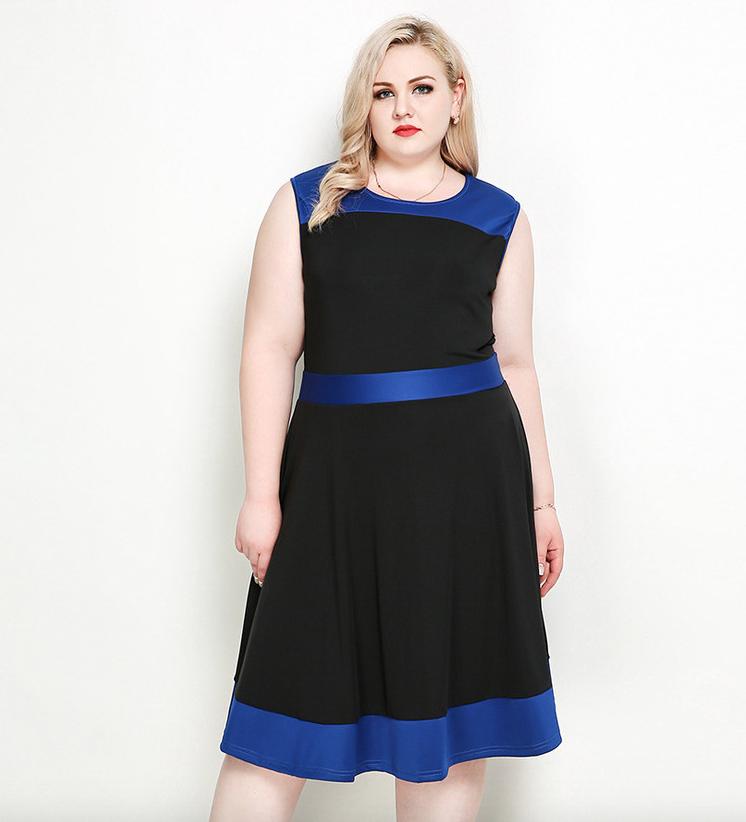 11e3f0c14c9 Plus Size Sleeveless Color Block Skater Dress - Plusylicious